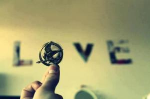Love-the-hunger-games